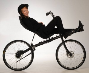 recumbent with shaft drive